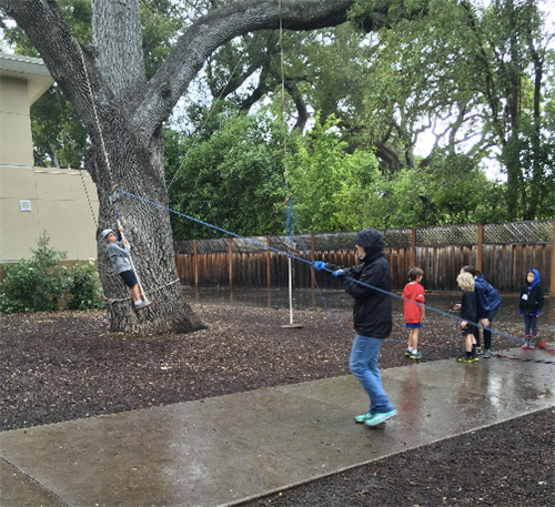 Pulley and tree activity